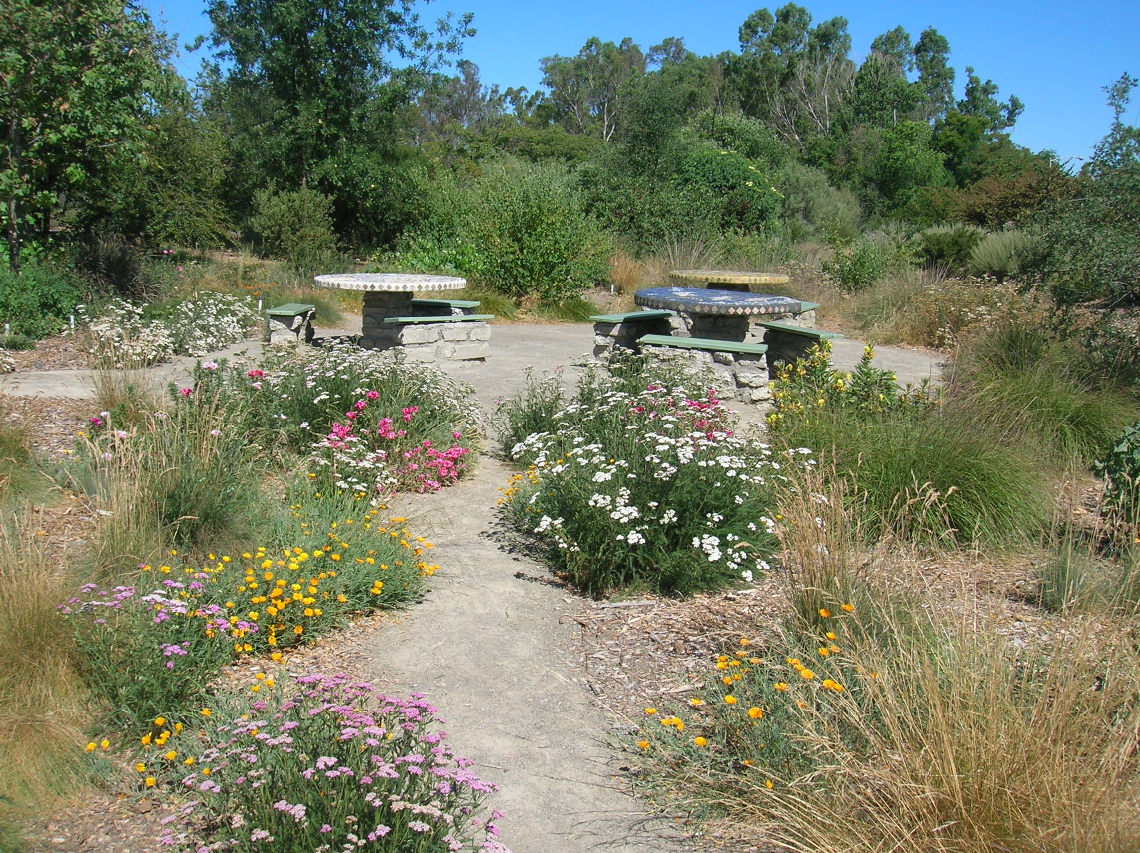 The Granada Native Garden Newsletter A Demonstration Garden for
