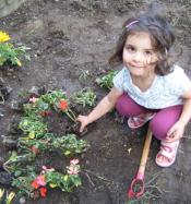 Child in garden 2