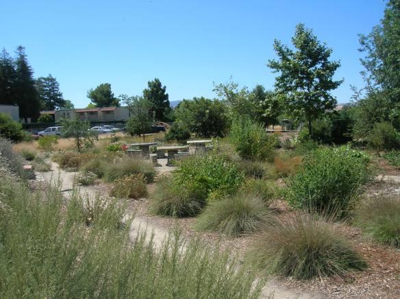 The Garden in June, 2012
